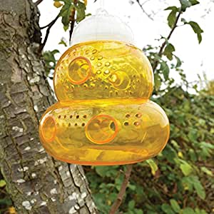 Seicosy (TM) Non-toxic Wasp Trap, Sting Free, Trap Bee, Wasp, Hornet, Yellow Jacket, Fruit Fly and More