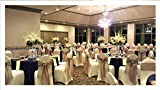 burlap chair covers SPRINGROSE Ivory Scuba Spandex Stretch Universal Wedding Chair Covers (Set of 10). IT is Made for Use on Folding and Banquet Chairs.