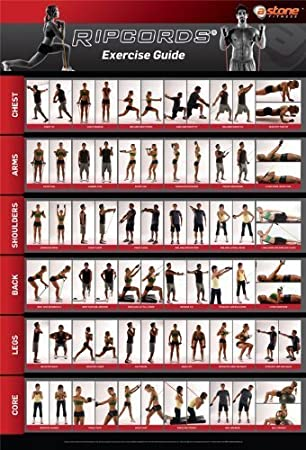 photo regarding Printable Resistance Bands Exercises called Ripcords Physical fitness Direct Poster Resistance Band Exercise session Chart
