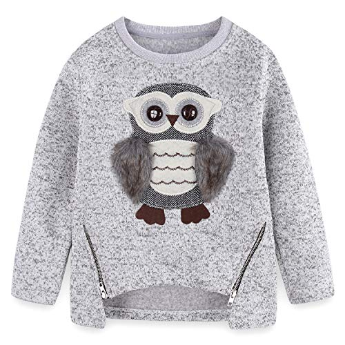 Cute Owl Sweatshirts for Teen Girls Kids Little Big Girls Pullover Crewneck Fleece Size 5-6