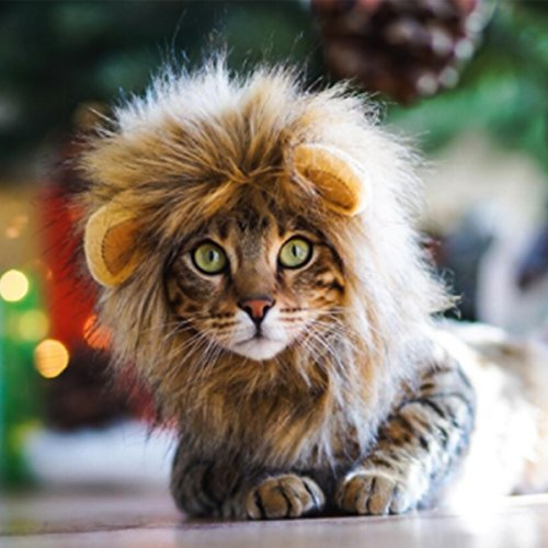 Namsan Lion Mane for Cats - Pet Dog Cat Halloween Costumes for Cats or Small Dogs by Namsan