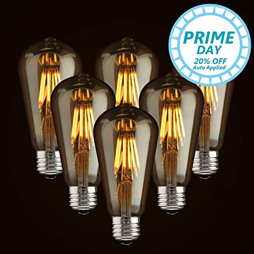LED Dimmable Vintage Edison Led Bulbs 6W Antique Style Edison Light Bulbs, 2300K Warm White (Amber Gold Glass), Squarrel Cage Filament Vintage Light Bulb,ST64, E26 Base (2300K-6W-6PCS)