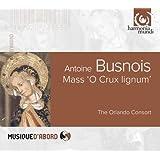 アントワーヌ・ビュノワ : 作品集 (Antoine Busnois : Mass 'O Crux lignum' / The Orlando Consort) [輸入盤]