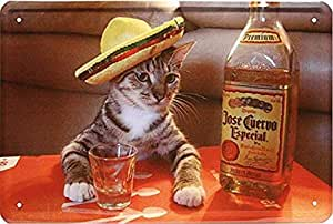 KELLEN WHITEHEAD with Alcohol Tequila Cat with Hat Funny ...