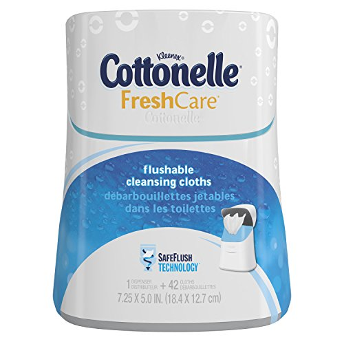 Cottonelle Fresh Care Flushable Moist Wipes Upright Dispenser, 42 Count