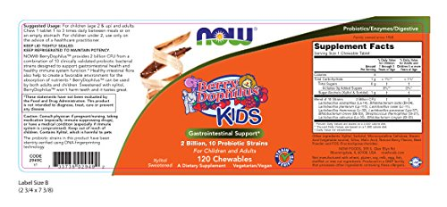BerryDophilus Kids Now Foods 120 Chewable