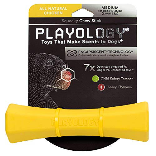 Playology Squeaky Chew Stick (Medium (15-35 lbs), Chicken)