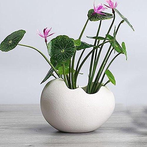 - Better-Way Crack Egg Shape Orchid Planter Pot Small Modern Decorative Ceramic Flower Plant Pot Home Office Desk Mini Succulent Cactus Container Indoor Decoration (4.3 inch White)