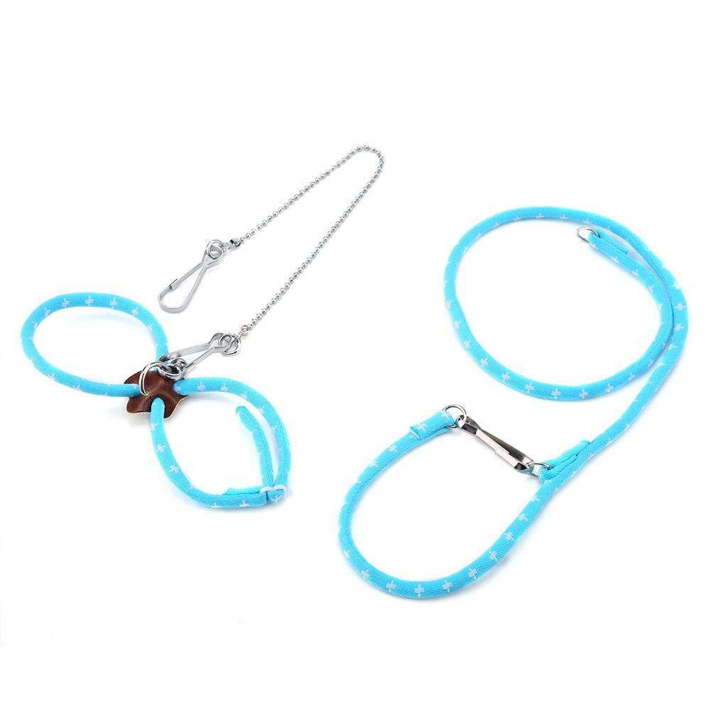 Sheens Imbracatura e guinzagli per Criceto Regolabili Cinghie Anti-morso Colorate Cinghia di trazione per Gite allaperto Blu