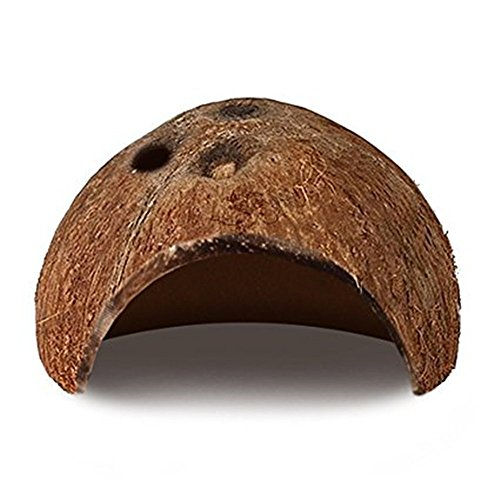 ceb9f8f6df9 Miraculous Joy Natural Coco Hut-Eco Friendly Non-toxic Made of Real coconut