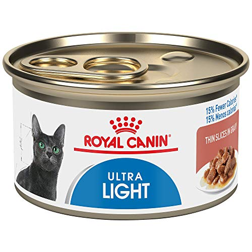 royal canine wet cat food - 5