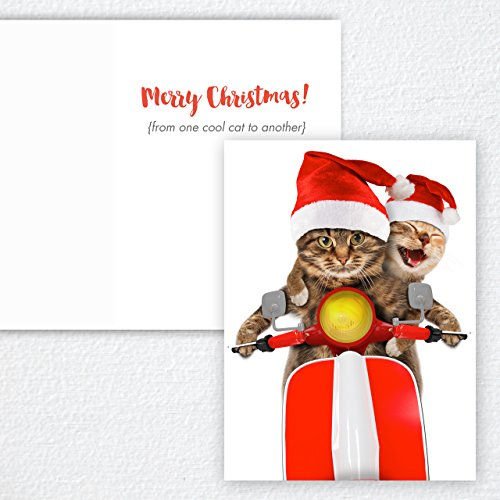 Scooter Cats Holiday Card Pack - Set of 25 cards - 1 design, versed inside with envelopes Photo #4