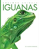 Amazing Animals: Iguanas