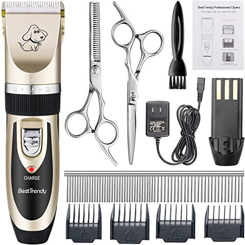 51ffudRc05L - BestTrendy Professional Cat Dog Clippers, Low Noise Rechargeable Cordless Electric Pet Grooming Kit Tool Hair Trimmer Razor Blades with Combs, Scissor (Gold+Black)