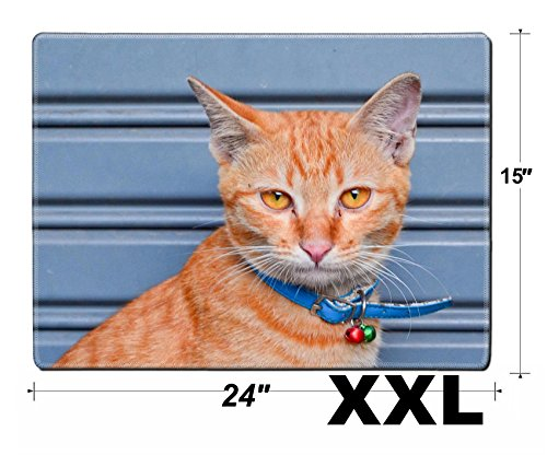 Orange Tabby Portrait - MSD Extra Large Mouse Pad XXL Extended Non-Slip Rubber Large Gaming Desk Mat IMAGE ID 19659213 portrait of orange tabby
