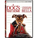 A Dog's Way Home (Bilingual)