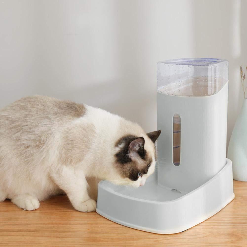 Gatos y Otros Animales Betteros Dispensador de Agua autom/ático para Mascotas 3.8 L Alimentador autom/ático de Agua para Mascotas Fuentes Desechables de Agua para Mascotas para Perros