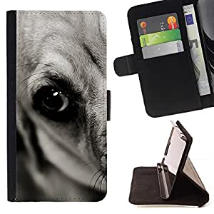 Momo Phone Case / Flip Funda de Cuero Case Cover - Flat Coated Retriever Negro Gran Danés; - Samsung Galaxy S3 MINI 8190