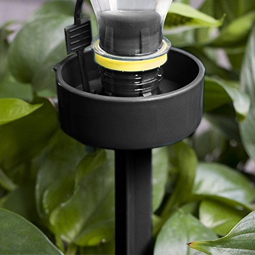 DCZTELG Plant Waterer Spikes Devices System Automatic Irrigation for Indoor and Outdoor Your Flower Potted Plants Black 8Pack (Black8) by DCZTELG (Image #5)