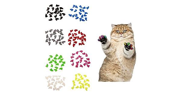 LPxdywlk 20Pcs Plástico Gatos Coloridos Tapas de uñas Paw Claw Protector Cubierta con Pegamento Mascotas Juguete Grey S: Amazon.es: Productos para mascotas