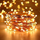 EShing 33ft 100 LEDs Copper Wire Fairy String Lights with Power Adapter for Indoor Outdoor Decorations, UL-Listed, Waterproof, Warm White