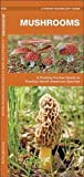 Mushrooms: A Folding Pocket Guide to Familiar North American Species (A Pocket Naturalist Guide)