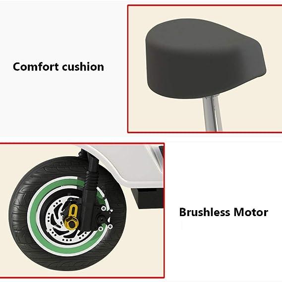 SZPDD Bicicleta eléctrica Plegable de 3 Ruedas E-Bike (12 ...