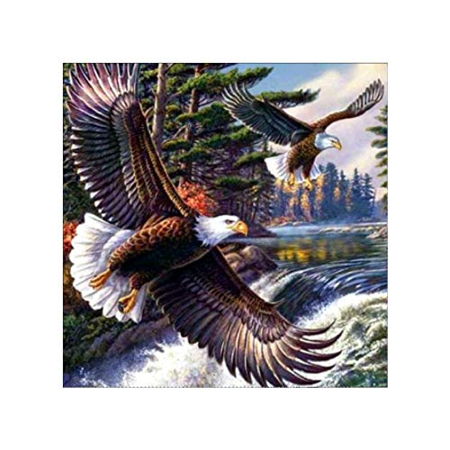 5D Handmade DIY Craft Full Round Diamond Painting Soaring Eagle Mosaic Cross Embroidered Embroidery Needlework Sewing New Year Decoration Gift (Soaring Eagle Embroidery)