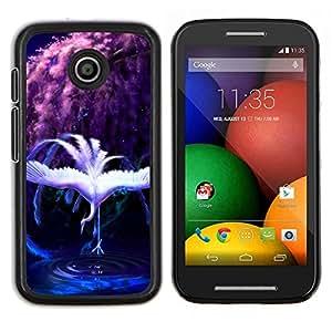 Qstar Arte & diseño plástico duro Fundas Cover Cubre Hard Case Cover para Motorola Moto E (Rainbow Cisne)