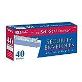 Peel & Seal Security Envelope (40/pack) - #10 (Pack of 6)