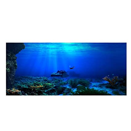 Acuario Fondo HD Submarino Coral Reef Fotos Papel Pintado Acuario Pescado MAR de Pared XXL Submarino