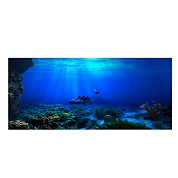 Acuario Fondo HD Submarino Coral Reef Fotos Papel Pintado Acuario Pescado MAR de Pared XXL Submarino Underwater Mundo decoración de Pared: Amazon.es: Hogar