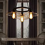 SEOL-LIGHT Vintage Chandeliers Max 180W With 3 Lights Metal and Glass Fixture for Kitchen,Living room,Dinning,Foyer,Balcony