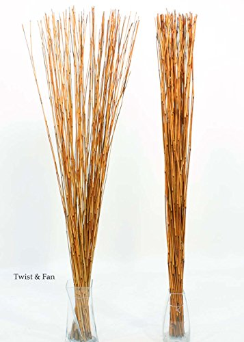 Green Floral Crafts Decorative Reed Sticks Approximately 3.5-4FT by 1/8'' Diameter, Package of 50- Burnt Orange by Green Floral Crafts