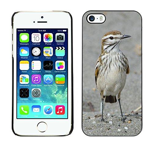 Premio Sottile Slim Cassa Custodia Case Cover Shell // F00005794 Xolmis rubetra // Apple iPhone 5 5S 5G