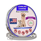 Love Pet Charities Best Flea Collar Dogs - Tick Collar Dogs - 100% Quality Flea Tick Prevention Dogs Puppies - 8 Months Protection - One Size Fits All - Flee Repellent