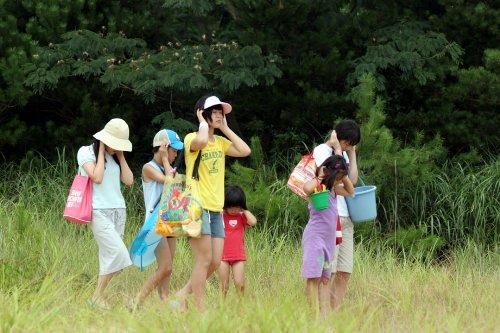 Japanese Movie - Tennen Kokekko (English Subtitles) Blu-Ray Special Edition [Japan BD] TCBD-113