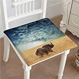 Mikihome Outdoor Chair Cushion Safari Rhino Rhinoceros Sun Shining Through Cloudy Sky Grassland View Blue Ivory Comfortable, Indoor, Dining Living Room, Kitchen, Office, Den, Washable 18''x18''x2pcs