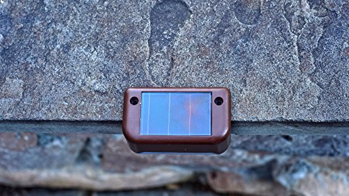 Review MAXSA Solar Step &