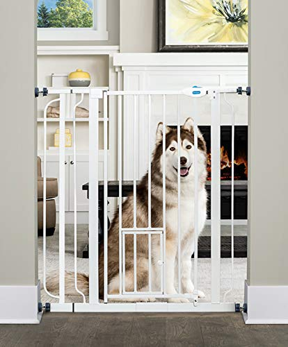 Carlson Extra Tall Walk Through Pet Gate with Small Pet Door, Includes 4-Inch Extension Kit, 4 Pack Pressure Mount Kit and 4 Pack Wall Mount Kit (Carlson Extra Wide Gate With Small Pet Door)
