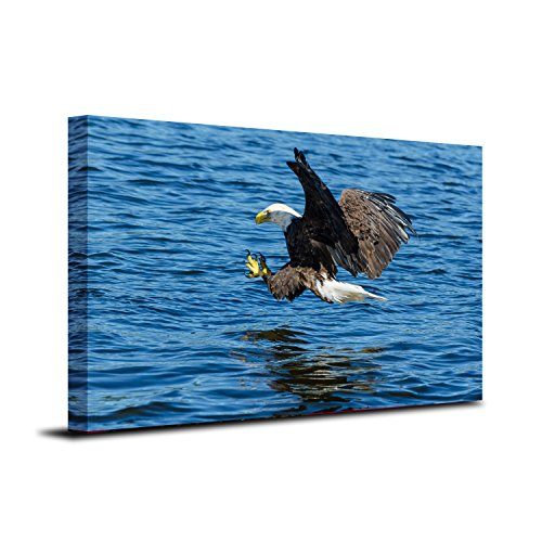 Royllent 1 Panel Framed Wall Decor Art Bald Eagle USA Painting The Picture Print On Canvas For Home Decor Decoration Gift piece (Stretched By Wooden Frame,Ready To Hang) RA-CP0007 (Flying Eagle)