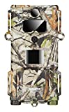 MINOX DTC 450 Trail Cam - The Slimmest Most Unobtrusive Weatherproof Wildlife and Outdoor Surveillance Camera with Polycarbonate Housing
