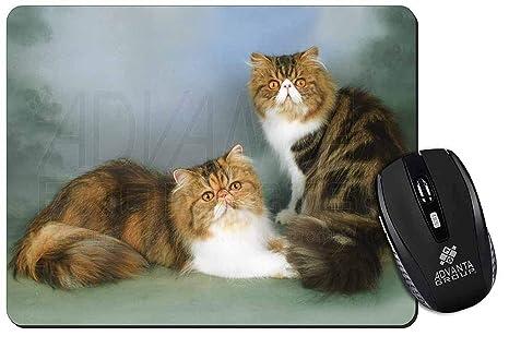 Tabby Tortie gatos persas Estera del ratón del ordenador regalo de Navidad de la