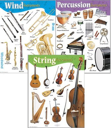 Music Chart Set - Music Poster Chart Set - String, Percussion and Wind Instruments. Ideal for Schools and Home Learning by Trend