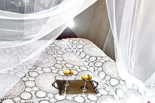 Review Jumbo Mosquito Netting Canopy