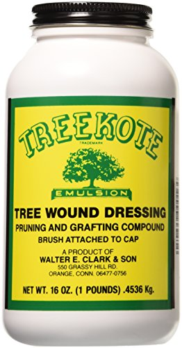 (Clarks 00016 Treekote Brushtop Container, 16-Ounce)