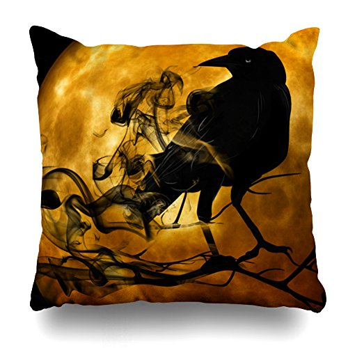 Decorativepillows 20 x 20 inch Throw Pillow Covers,Vintage Gothic Halloween Large Black Raven Bird Pattern Double-sided Decorative Home Decor Indoor/Outdoor Garden Sofa Bedroom Car Kitchen Nice Gift