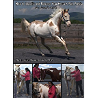 How to Identify and Release Your Horse's Pain Points: An Owner's Guide