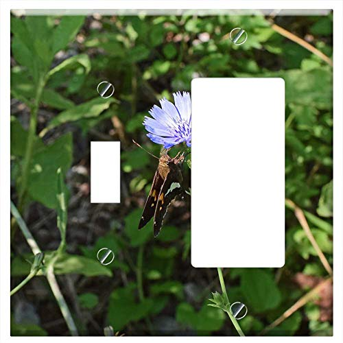 1-Toggle 1-Rocker/GFCI Combination Wall Plate Cover - Chicory With Silver-Spotted Skipper Butterfly ()