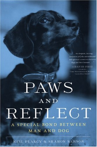 Paws and Reflect: A Special Bond Between Man and Dog